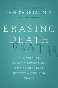 erasing-death_custom-8059bea0f41cae8557dc09caefa74efd4471331a-s2
